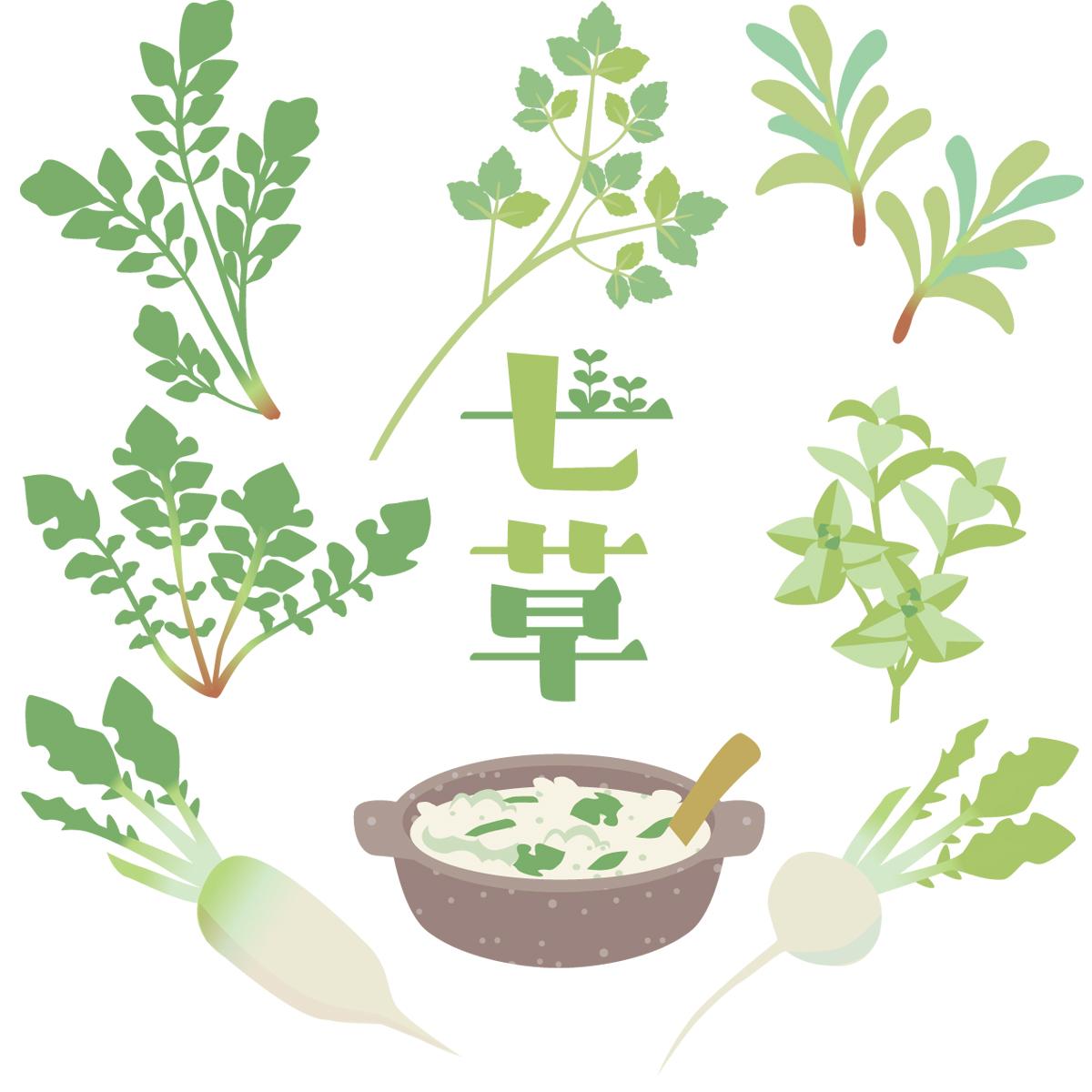七草粥 レシピ 炊飯器 人気